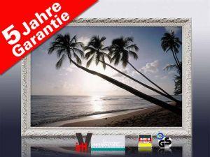 Infrarot Bildheizung 500 Watt 90x60 Stilrahmen StAw Barbados