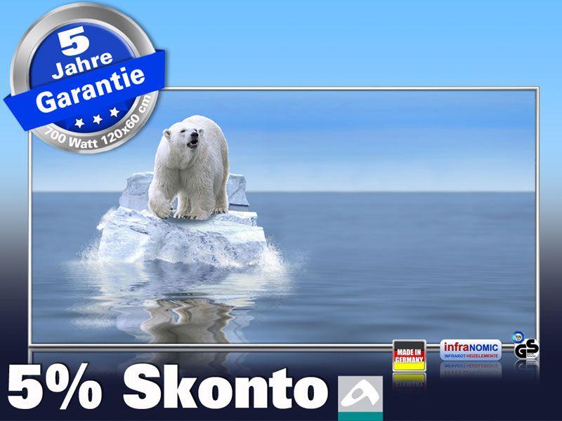 Infrarot Bildheizung 700 Watt 120x60 M10-SL Eisbär