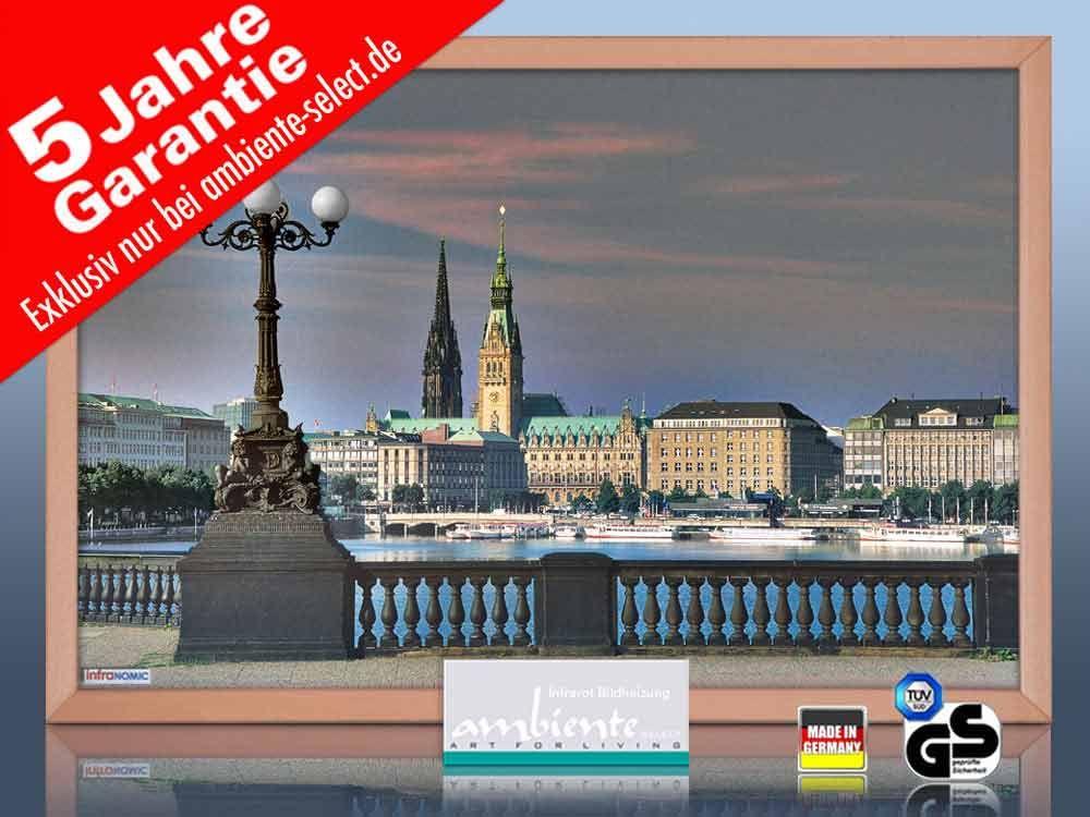 infrarot Bildheizung 500 Watt 90x60 Holzrahmen HB30 Hamburg
