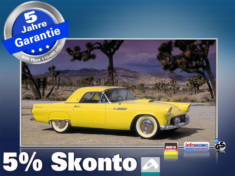 Infrarot Bildheizung 600 Watt 110x60 M10-SL Ford Thunderbird