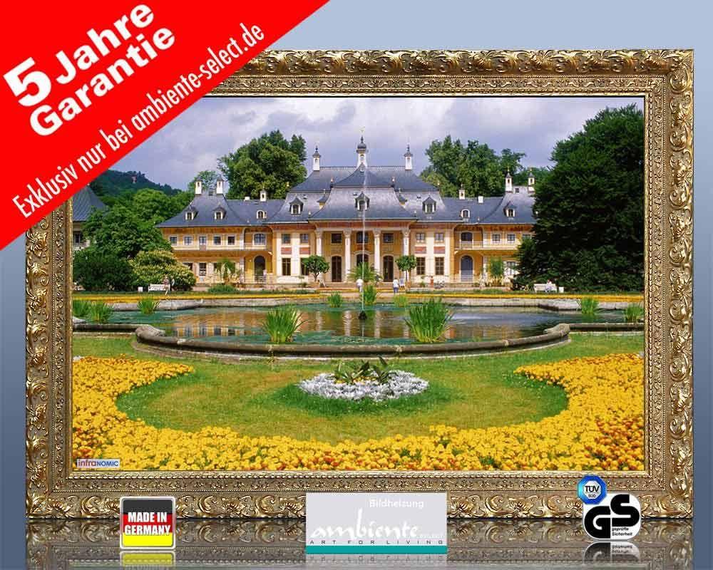infrarot Bildheizung 500 Watt 90x60 Stilrahmen StG Schloss Pillnitz