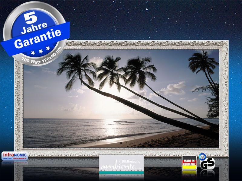 Infrarot Bildheizung 700 Watt 120x60 Stilrahmen StAw Barbados