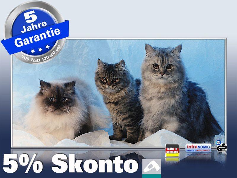 Infrarotheizung als Bild Bildheizung 700 Watt 120x60 M10-SL Katzen