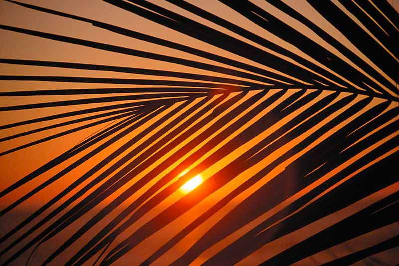 Bildheizung-Motiv Sonnenuntergang 01 für Standard Infrarotheizung
