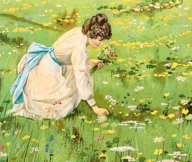 Litho Frau pflückt Blumen Bildauswahl für Bildheizung 70x60