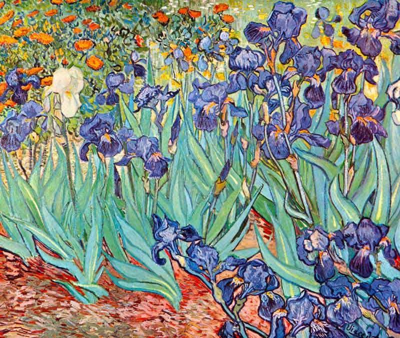 van Gogh: Stilleben Schwertlilien Bildauswahl für Bildheizung 70x60