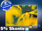 infrarot Bildheizung 500 Watt 90x60 M10-SL Gelbe Blume