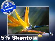 infrarot Bildheizung 500 Watt 90x60 M10-SL Strelitzie