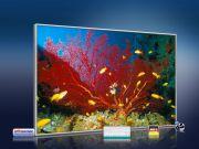 infrarot Bildheizung 500 Watt 90x60 M10-SL Aquarium