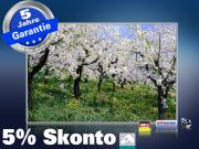 infrarot Bildheizung 500 Watt 90x60 M10-SL Apfelblüte