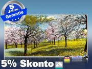 Infrarot Bildheizung Kunst 700 Watt 120x60 M10-SL Baumblüte
