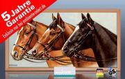 Infrarot Bildheizung 700 Watt 120x60 Holzrahmen HB30 Drei Pferde