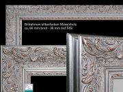 Design Spiegel Infrarotheizung 600 Watt Stilrahmen StSi Blumenranke