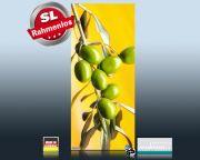 Infrarotheizung als Bild Bildheizung 900 Watt 140x60 M10-SL Oliven