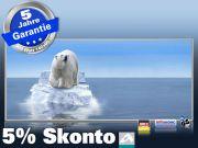 Infrarotheizung als Bild Bildheizung 900 Watt 140x60 M10-SL Eisbär