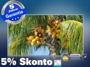 Infrarot Bildheizung 600 Watt 110x60 M10-SL Palmenfrüchte