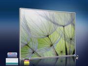 Infrarot Bildheizung 400 Watt 70x60 M10-SL Pusteblumen