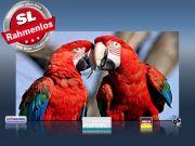 Infrarot Bildheizung 600 Watt 110x60 M10-SL Papageien