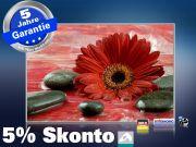 infrarot Bildheizung 500 Watt 90x60 M10-SL Rote Gerbera