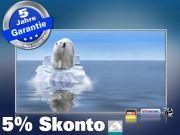 Infrarot Bildheizung 600 Watt 110x60 M10-SL Eisbär