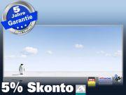 Infrarotheizung mit Bild Bildheizung 900 Watt 140x60 M10-SL Pinguin