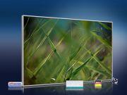 infrarot Bildheizung 500 Watt 90x60 M10-SL Gras