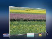 infrarot Bildheizung 500 Watt 90x60 M10-SL spring