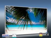 Infrarot Bildheizung 600 Watt 110x60 M10-SL Strand