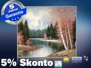Infrarot Bildheizung Kunst 400 Watt 70x60 M10-SL Berglandschaft