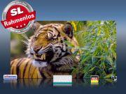 Infrarot Bildheizung 600 Watt 110x60 M10-SL Tiger