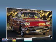 Infrarot Bildheizung 600 Watt 110x60 M10-SL Cadillac