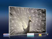 infrarot Bildheizung 500 Watt 90x60 M10-SL Pfau II