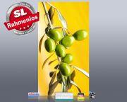 Infrarot Bildheizung 600 Watt 110x60 M10-SL Oliven