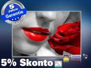 Infrarot Bildheizung 500 Watt 90x60 M10-SL red lips