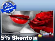 Infrarotheizung als Bild Bildheizung 900 Watt 140x60 M10-SL red lips