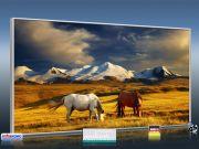 Infrarot Bildheizung 700 Watt 120x60 M10-SL Wildpferde