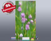 Infrarot Bildheizung 600 Watt 110x60 M10-SL Schnittlauch