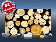 Infrarot Bildheizung 600 Watt 110x60 M10-SL Holzstapel