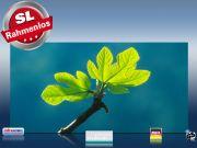 Infrarot Bildheizung 700 Watt 120x60 M10-SL Ahornblatt