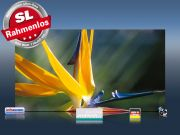 Infrarot Bildheizung 600 Watt 110x60 M10-SL Strelitzie
