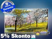 Infrarot Bildheizung Kunst 600 Watt 110x60 M10-SL Baumblüte