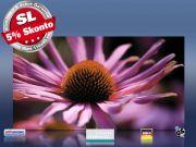 Infrarot Bildheizung 600 Watt Rahmenlos slim-line 110x60 Echinazea
