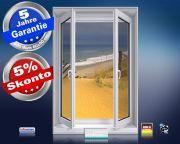 Infrarot Bildheizung 500 Watt 90x60 M10-SL Fensterblick Düne