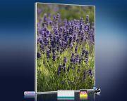 Infrarot Bildheizung 500 Watt 90x60 M10-SL Lavendel