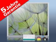 Infrarot Bildheizung 400 Watt 70x60 M23-SG Pusteblumen