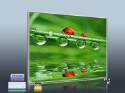 Infrarotheizung als Bild 400 Watt 70x60 M10-SL Marienkäfer