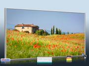 Infrarot Bildheizung ESG Glas 700 Watt 120x60 M10-SL Toskana