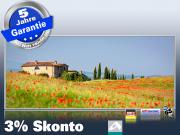 Infrarot Bildheizung 900 Watt 140x60 M10-SL Toskana