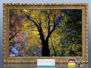Infrarot Bildheizung 500 Watt 90x60 Stilrahmen StG Herbst