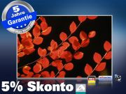 Infrarot Bildheizung 500 Watt 90x60 M10-SL Rote Blätter